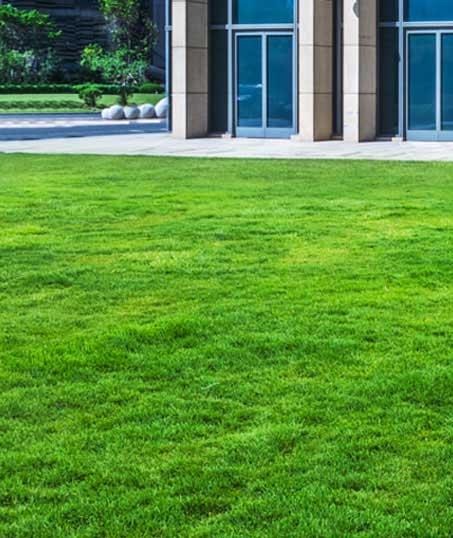 Harris Best Lawn Care LLC Aeration
