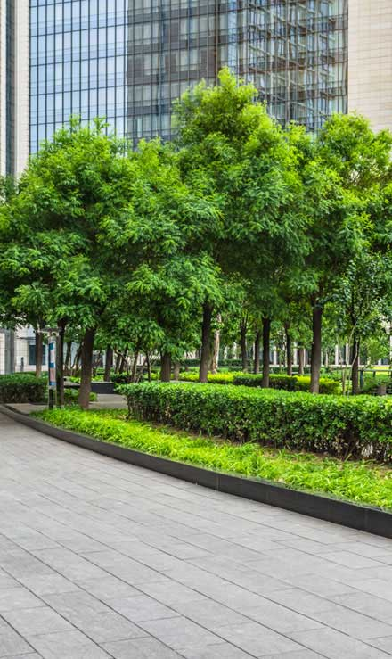 Harris Best Lawn Care LLC Commercial Grounds Maintenance