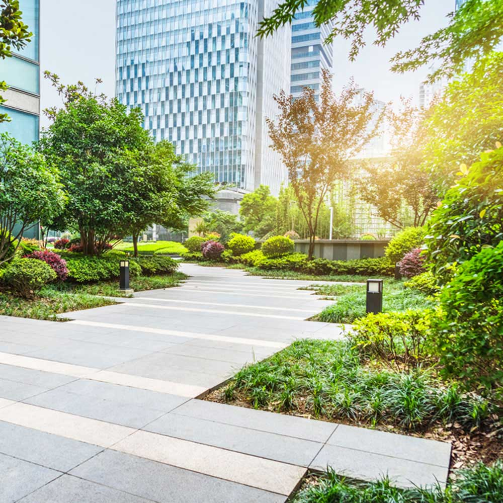 Commercial Landscaping Service