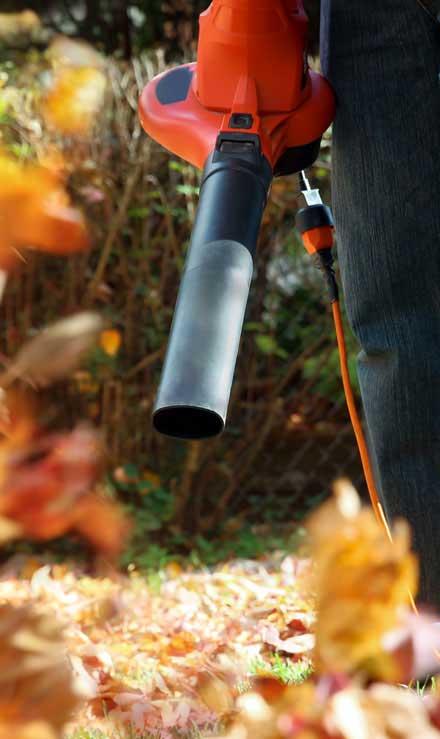 Harris Best Lawn Care LLC Leaf Removal
