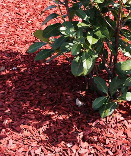 Harris Best Lawn Care LLC Mulching