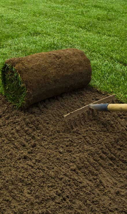 Harris Best Lawn Care LLC Sod Installation