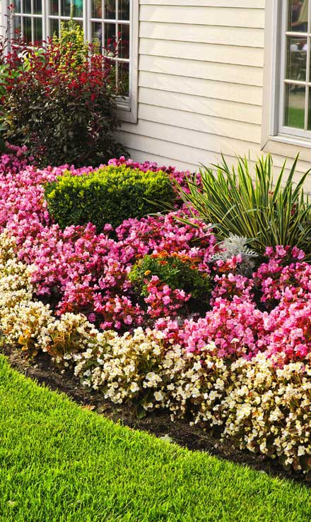 Harris Best Lawn Care LLC Garden Design